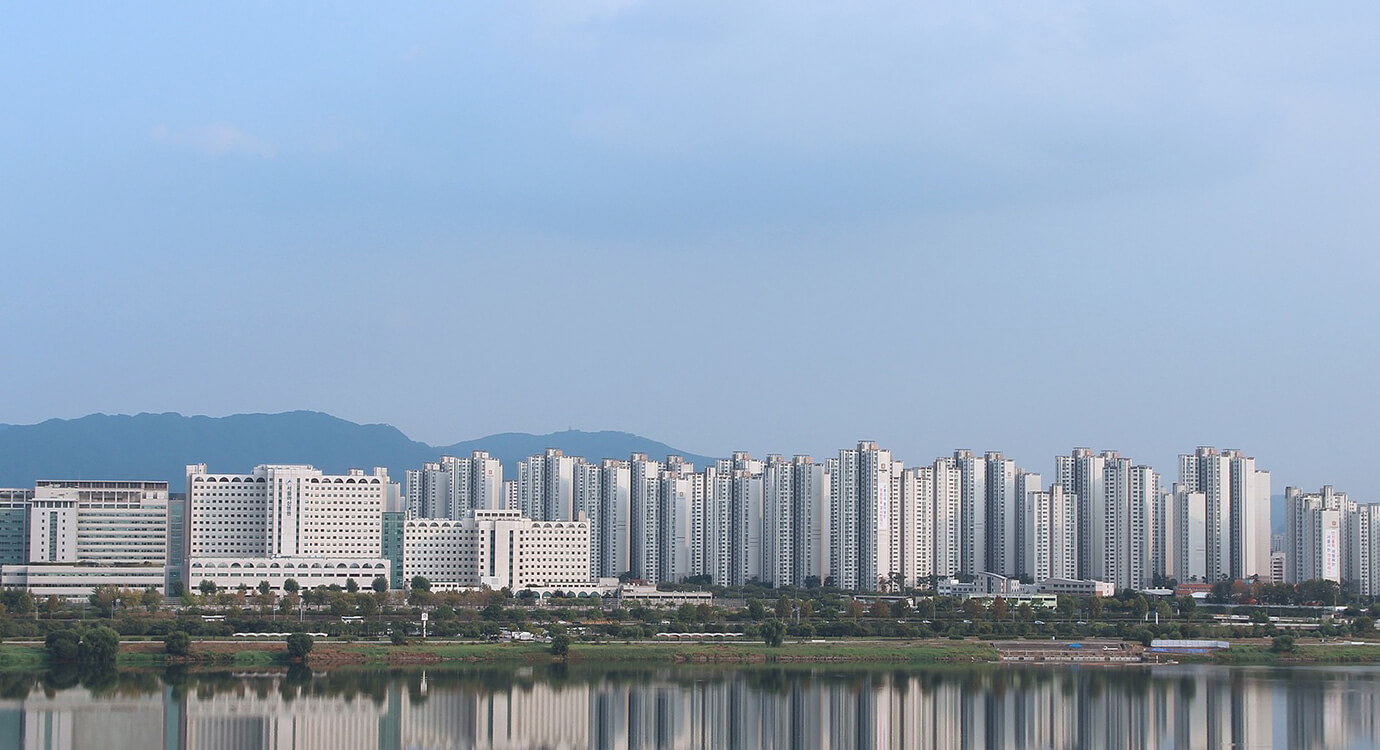 新江州韓国株式会社